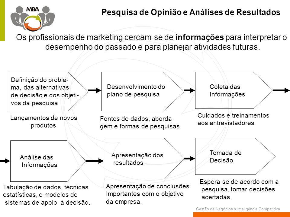 Gestão de Negócios & Inteligência Competitiva Pesquisa de Opinião e Análises de Resultados Os profissionais de marketing cercam-se de informações para