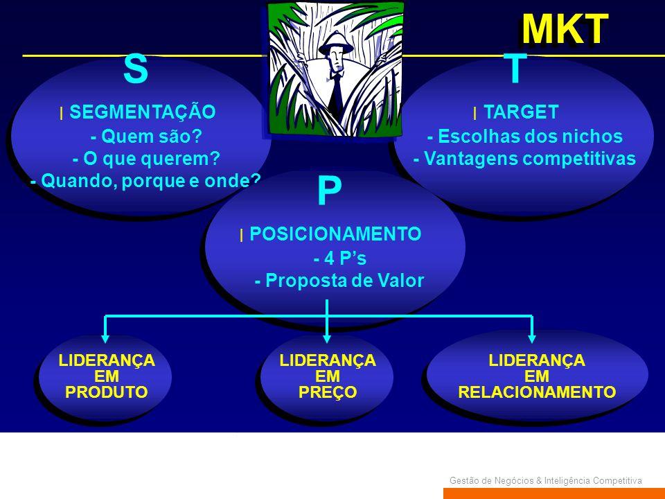 Gestão de Negócios & Inteligência Competitiva MKT S SEGMENTAÇÃO - Quem são? - O que querem? - Quando, porque e onde? T TARGET - Escolhas dos nichos -