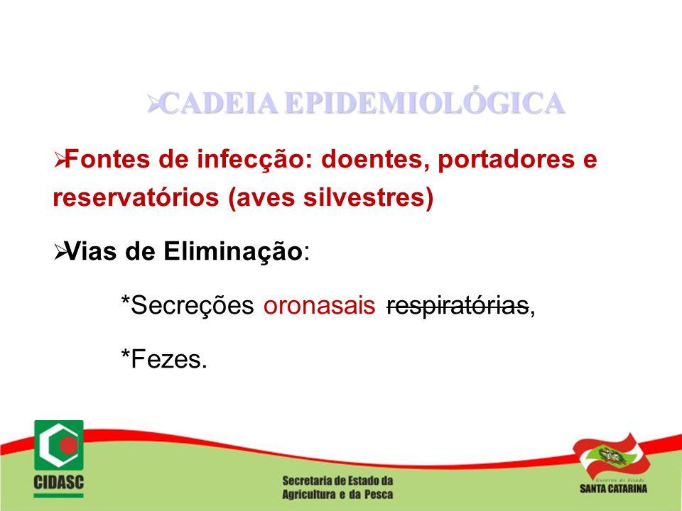 CADEIA EPIDEMIOLÓGICA CADEIA EPIDEMIOLÓGICA Fontes de infecção: doentes, portadores e reservatórios (aves silvestres) Vias de Eliminação: *Secreções o