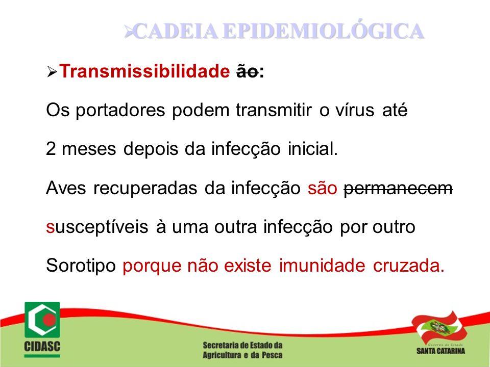 CADEIA EPIDEMIOLÓGICA CADEIA EPIDEMIOLÓGICA Transmissibilidade ão: Os portadores podem transmitir o vírus até 2 meses depois da infecção inicial. Aves
