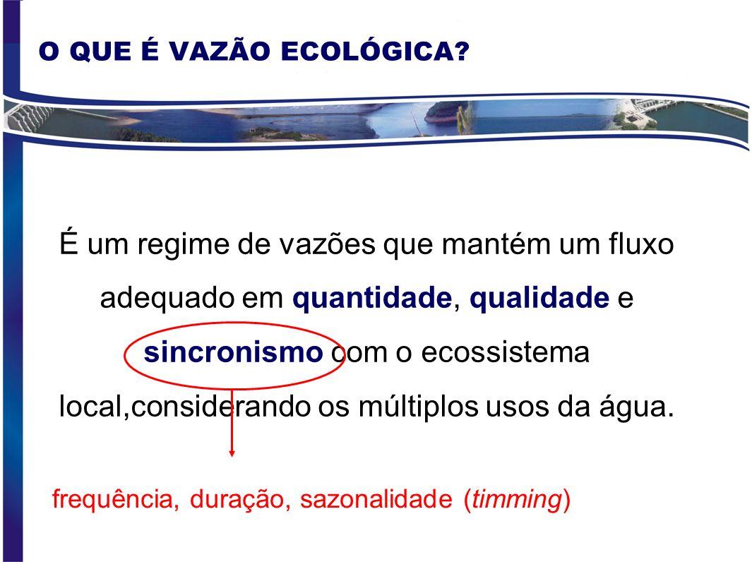 ÁREA DE ESTUDO Trecho de estudo e postos fluviométricos