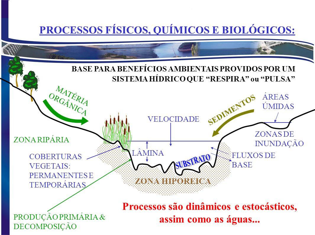 O QUE É VAZÃO ECOLÓGICA? É um regime de vazões que mantém um fluxo adequado em quantidade, qualidade e sincronismo com o ecossistema local,considerand