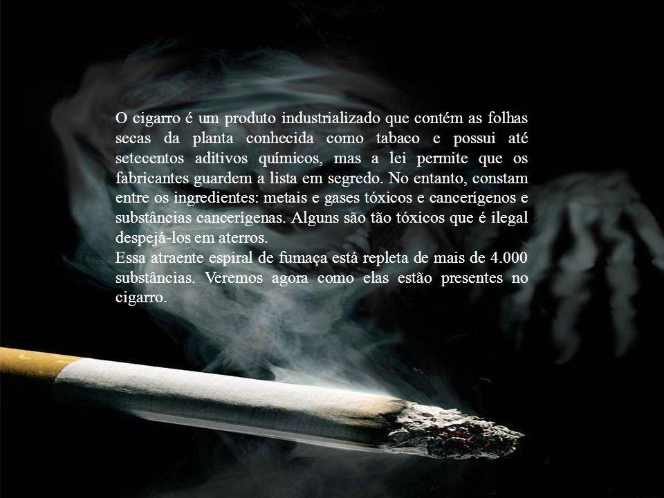 O cigarro é um produto industrializado que contém as folhas secas da planta conhecida como tabaco e possui até setecentos aditivos químicos, mas a lei