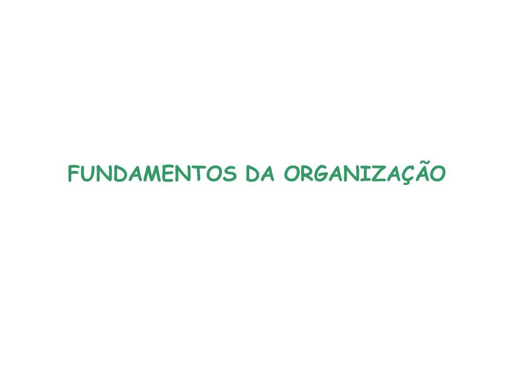 FUNDAMENTOS DA ORGANIZAÇÃO