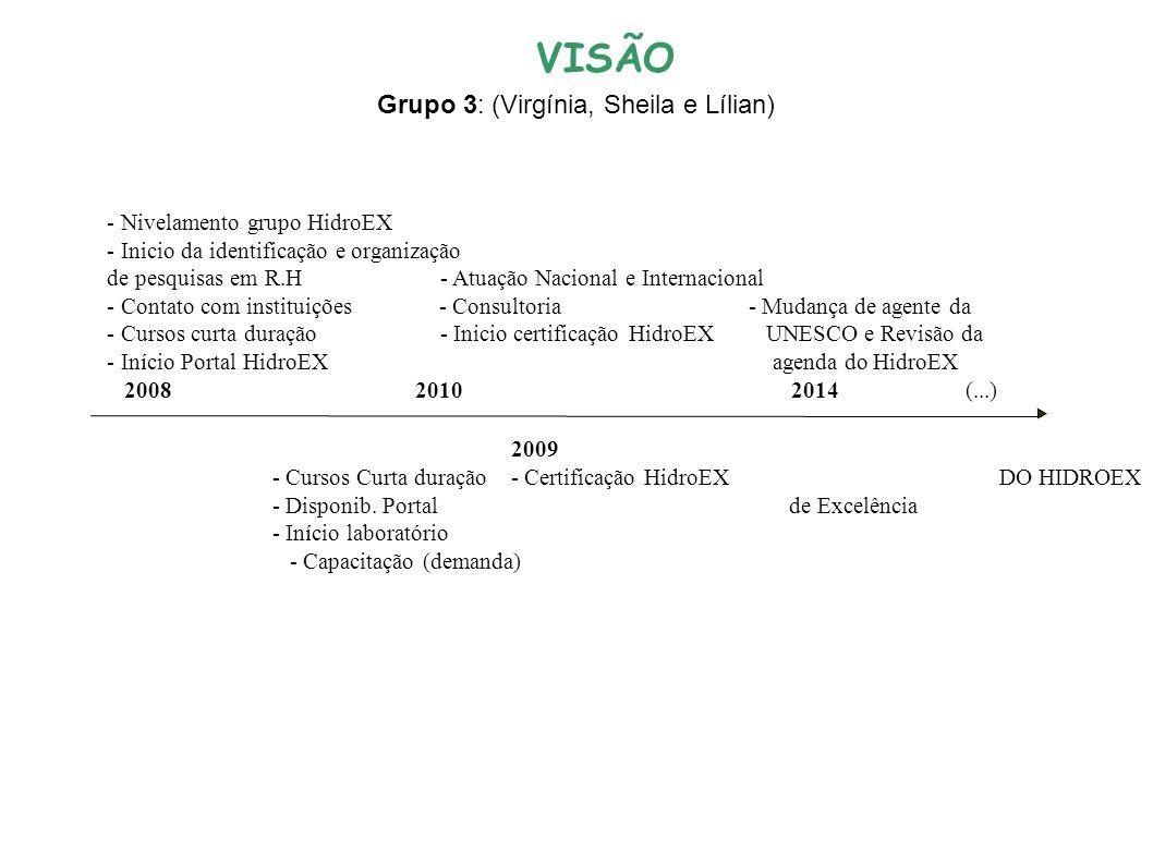 - Nivelamento grupo HidroEX - Inicio da identificação e organização de pesquisas em R.H - Atuação Nacional e Internacional - Contato com instituições - Consultoria - Mudança de agente da - Cursos curta duração - Inicio certificação HidroEX UNESCO e Revisão da - Início Portal HidroEX agenda do HidroEX 2008 2010 2014 (...) 20092013 EXCELENCIA - Cursos Curta duração- Certificação HidroEX DO HIDROEX - Disponib.
