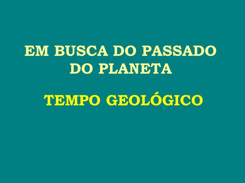 EM BUSCA DO PASSADO DO PLANETA TEMPO GEOLÓGICO