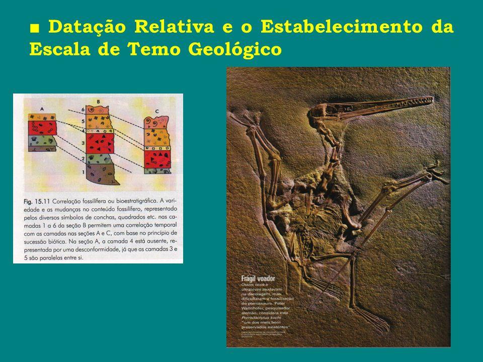 Datação Relativa e o Estabelecimento da Escala de Temo Geológico
