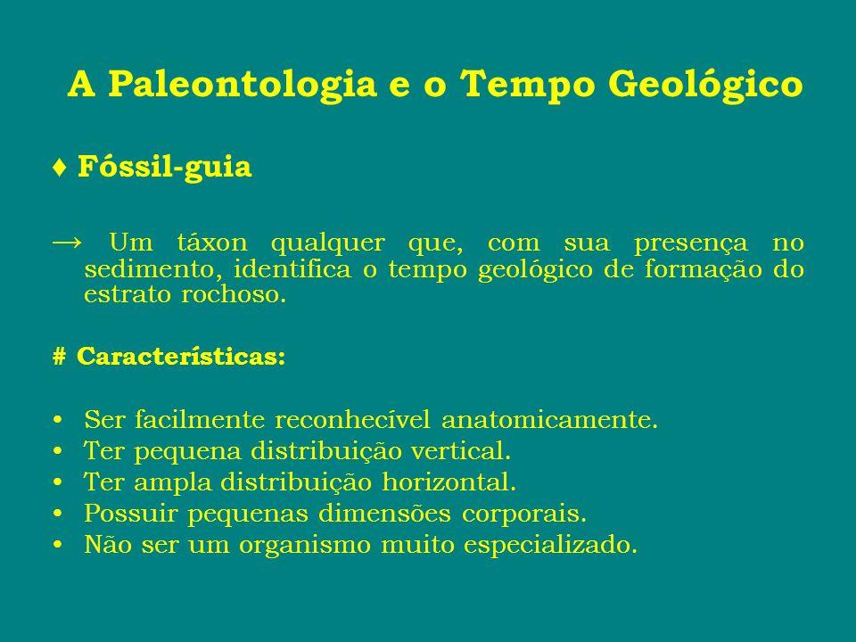 A Paleontologia e o Tempo Geológico Fóssil-guia Um táxon qualquer que, com sua presença no sedimento, identifica o tempo geológico de formação do estr