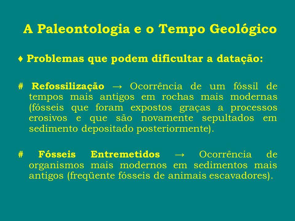 A Paleontologia e o Tempo Geológico Problemas que podem dificultar a datação: # Refossilização Ocorrência de um fóssil de tempos mais antigos em rocha