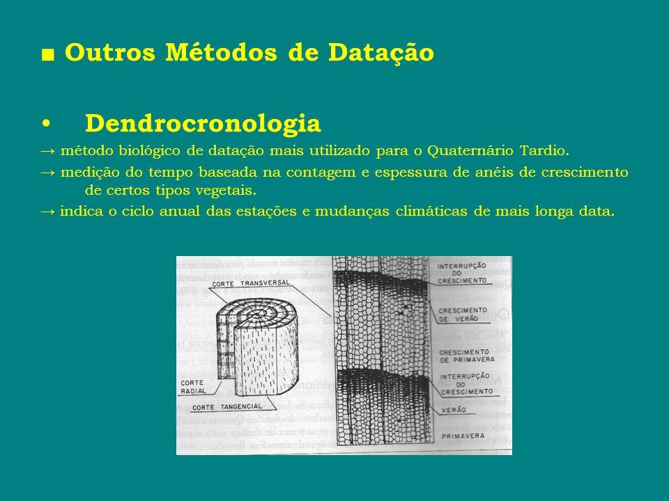 Outros Métodos de Datação Dendrocronologia método biológico de datação mais utilizado para o Quaternário Tardio. medição do tempo baseada na contagem