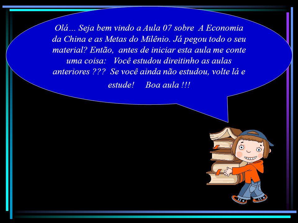 Olá… Seja bem vindo a Aula 07 sobre A Economia da China e as Metas do Milênio. Já pegou todo o seu material? Então, antes de iniciar esta aula me cont