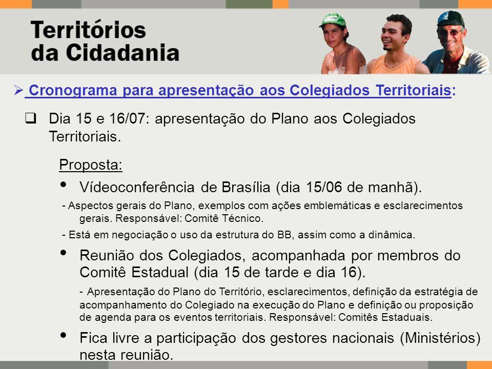 Cronograma para apresentação aos Colegiados Territoriais: Dia 15 e 16/07: apresentação do Plano aos Colegiados Territoriais.