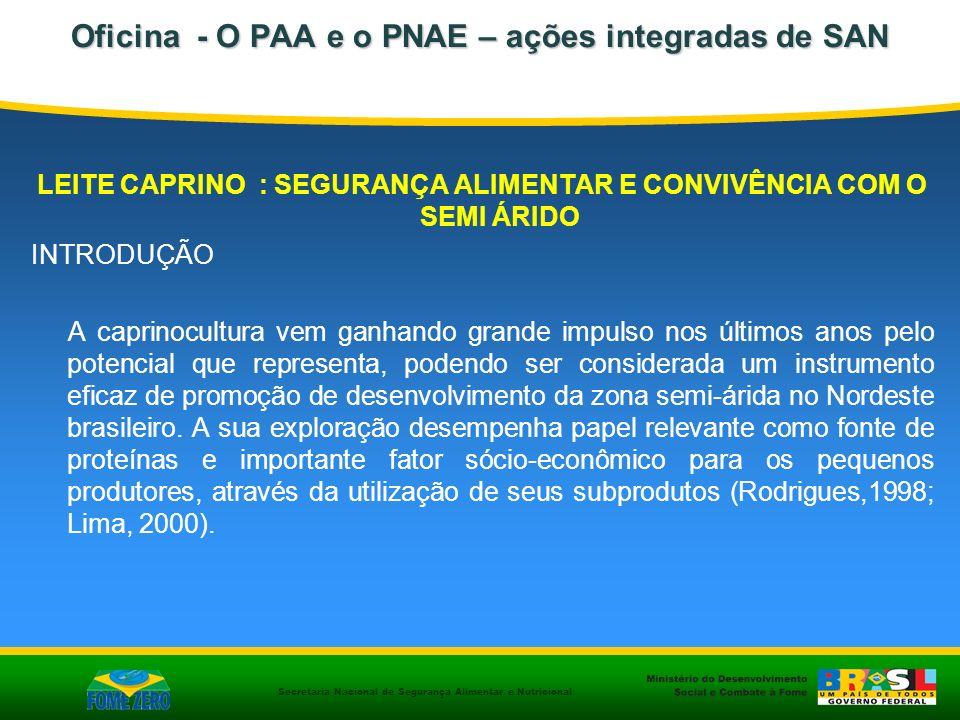 Secretaria Nacional de Segurança Alimentar e Nutricional LEITE CAPRINO : SEGURANÇA ALIMENTAR E CONVIVÊNCIA COM O SEMI ÁRIDO INTRODUÇÃO A caprinocultur