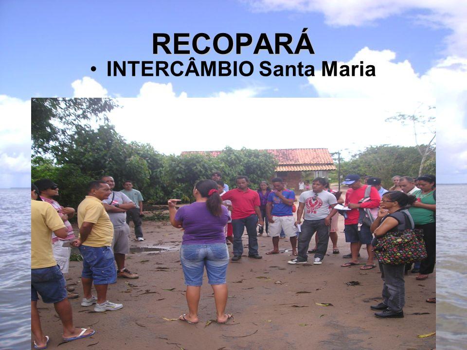 RECOPARÁ INTERCÂMBIO Santa Maria