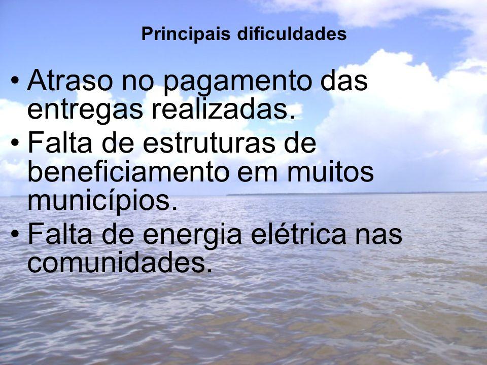 Principais dificuldades Atraso no pagamento das entregas realizadas. Falta de estruturas de beneficiamento em muitos municípios. Falta de energia elét