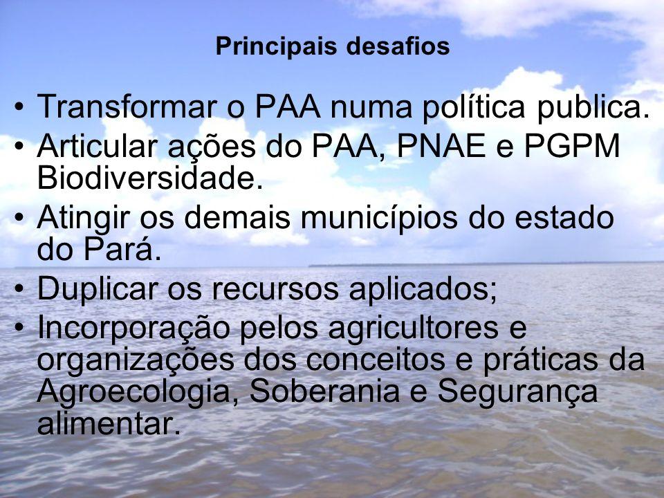 Principais desafios Transformar o PAA numa política publica.