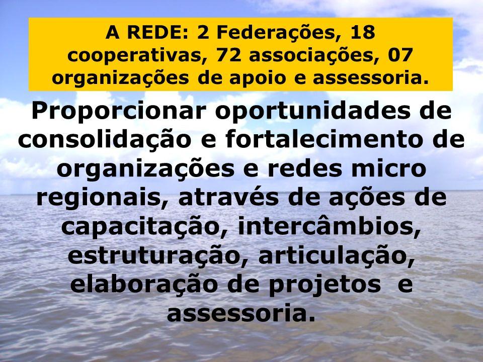 Proporcionar oportunidades de consolidação e fortalecimento de organizações e redes micro regionais, através de ações de capacitação, intercâmbios, estruturação, articulação, elaboração de projetos e assessoria.