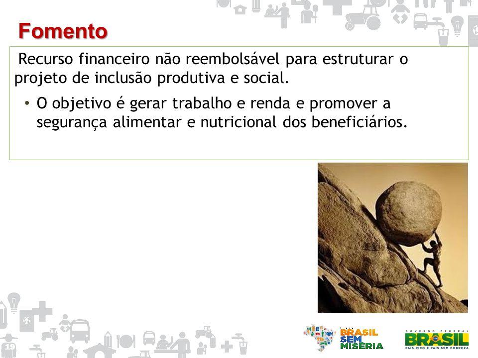 Recurso financeiro não reembolsável para estruturar o projeto de inclusão produtiva e social. O objetivo é gerar trabalho e renda e promover a seguran