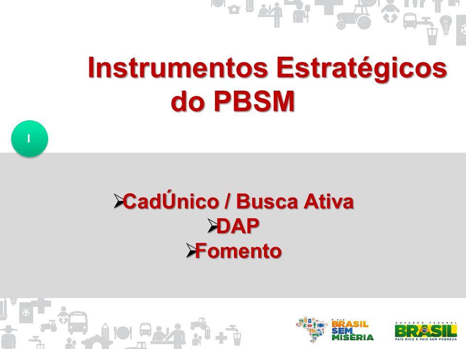 Instrumentos Estratégicos do PBSM CadÚnico / Busca Ativa CadÚnico / Busca Ativa DAP DAP Fomento Fomento I I