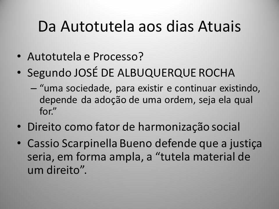 Para Cássio Scarpinella Bueno o Direito Processual é um ramo do direito que tem como missão última servir os outros, realizando-os, tornando-os realidade concreta.