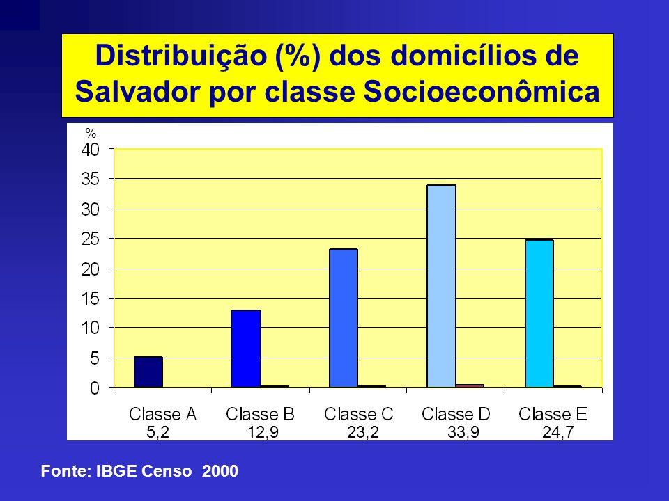 Distribuição (%) da população de Salvador por faixa etária HABITANTESHABITANTES IDADE Fonte: Censo 2000 IBGE 10% 8,8% 11,1% 11,9% 19,4% 16% 10,7% 5,9%6,3%