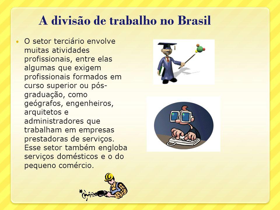 A divisão de trabalho no Brasil O setor terciário envolve muitas atividades profissionais, entre elas algumas que exigem profissionais formados em cur
