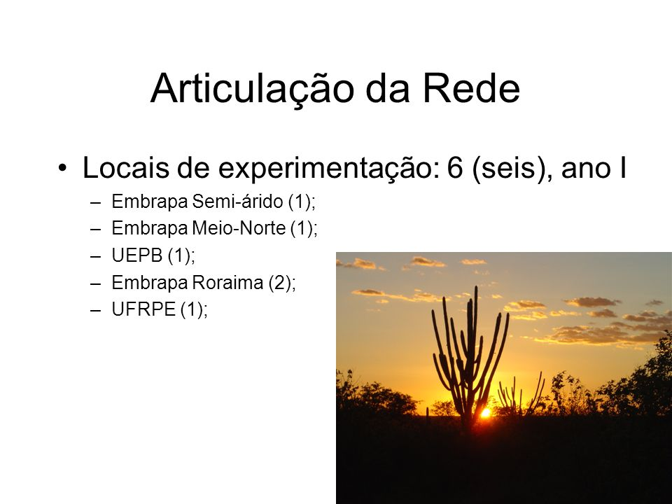 Locais de experimentação: 6 (seis), ano I –Embrapa Semi-árido (1); –Embrapa Meio-Norte (1); –UEPB (1); –Embrapa Roraima (2); –UFRPE (1); Articulação da Rede