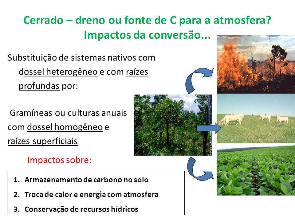 Cerrado – dreno ou fonte de C para a atmosfera? Impactos da conversão... Substituição de sistemas nativos com dossel heterogêneo e com raízes profunda