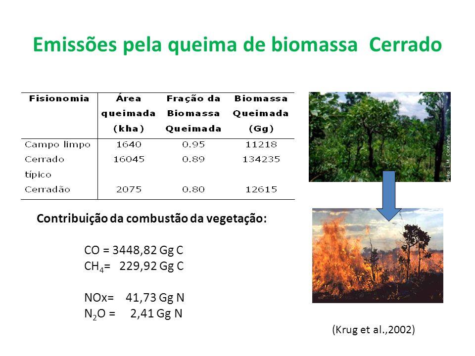 Emissões pela queima de biomassa Cerrado Contribuição da combustão da vegetação: CO = 3448,82 Gg C CH 4 = 229,92 Gg C NOx= 41,73 Gg N N 2 O = 2,41 Gg