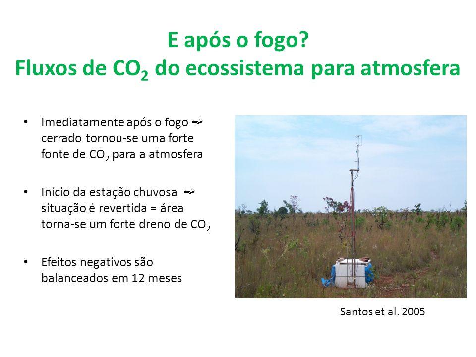 E após o fogo? Fluxos de CO 2 do ecossistema para atmosfera Imediatamente após o fogo cerrado tornou-se uma forte fonte de CO 2 para a atmosfera Iníci