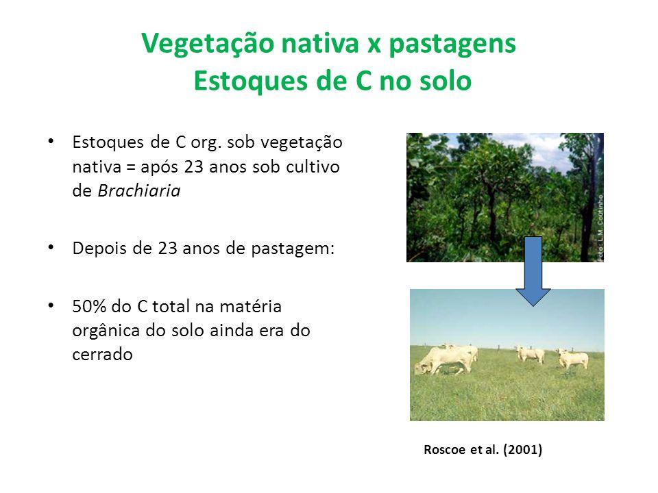 Vegetação nativa x pastagens Estoques de C no solo Estoques de C org. sob vegetação nativa = após 23 anos sob cultivo de Brachiaria Depois de 23 anos
