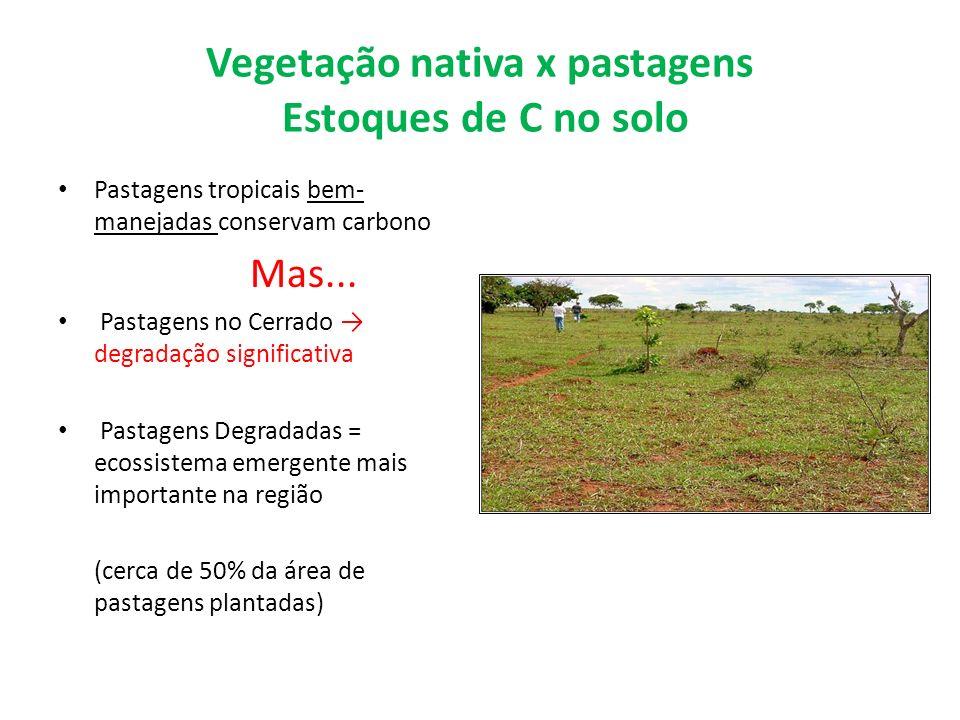Vegetação nativa x pastagens Estoques de C no solo Pastagens tropicais bem- manejadas conservam carbono Mas... Pastagens no Cerrado degradação signifi