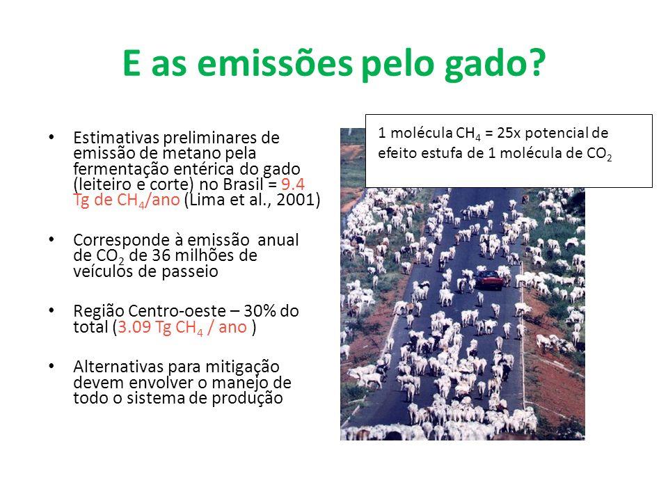 E as emissões pelo gado? Estimativas preliminares de emissão de metano pela fermentação entérica do gado (leiteiro e corte) no Brasil = 9.4 Tg de CH 4