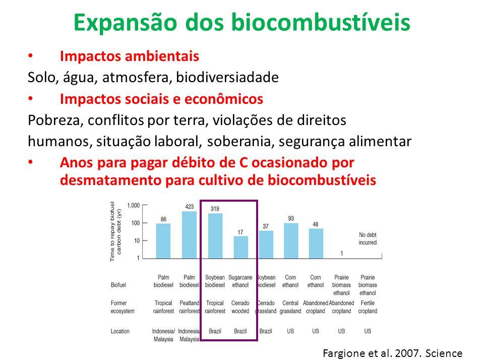 Expansão dos biocombustíveis Impactos ambientais Solo, água, atmosfera, biodiversiadade Impactos sociais e econômicos Pobreza, conflitos por terra, vi