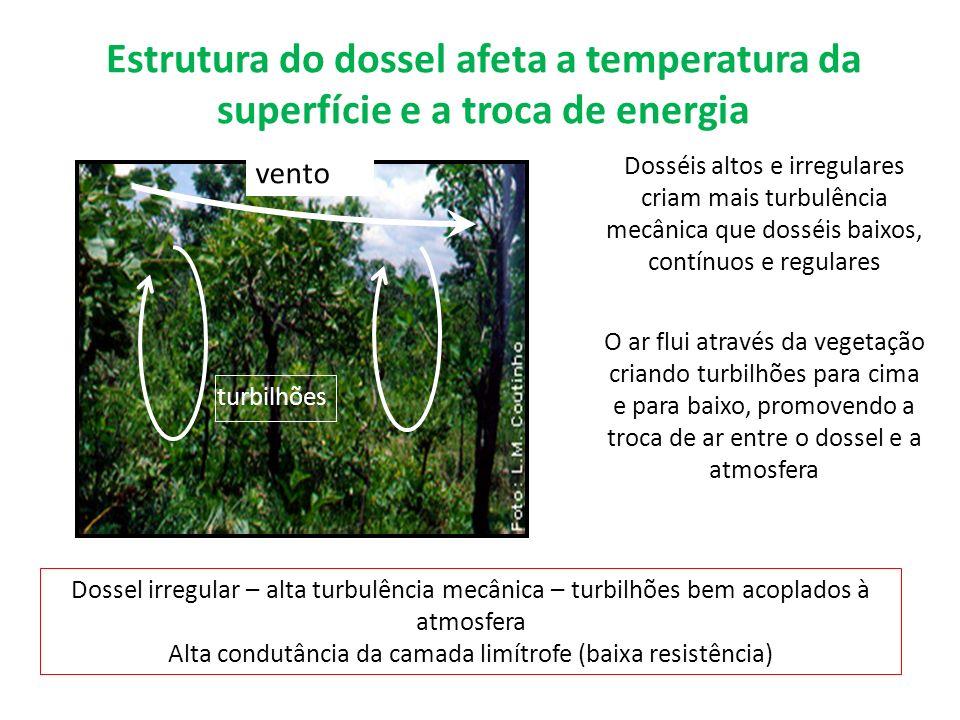 Dosséis altos e irregulares criam mais turbulência mecânica que dosséis baixos, contínuos e regulares O ar flui através da vegetação criando turbilhõe