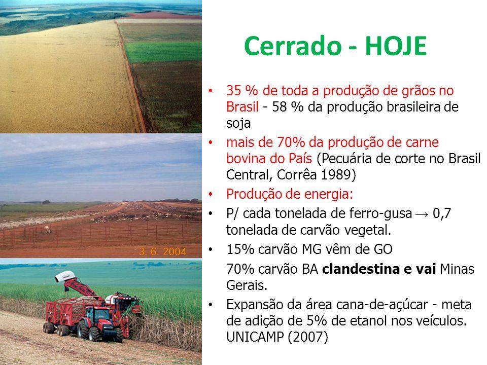 Cerrado - HOJE 35 % de toda a produção de grãos no Brasil - 58 % da produção brasileira de soja mais de 70% da produção de carne bovina do País (Pecuá