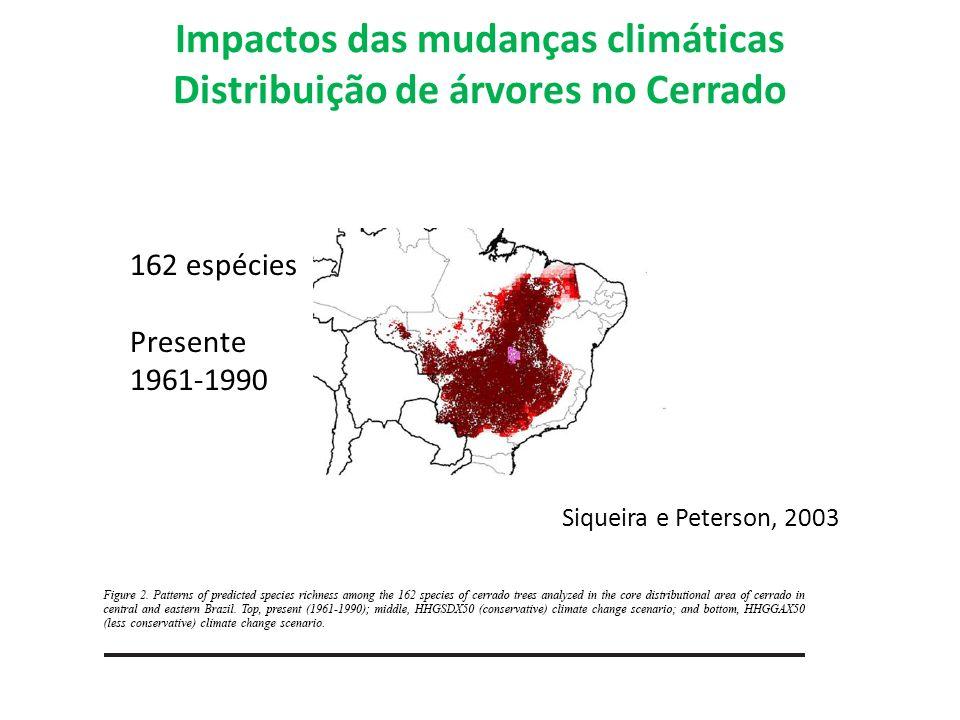 Impactos das mudanças climáticas Distribuição de árvores no Cerrado 162 espécies Presente 1961-1990 Siqueira e Peterson, 2003