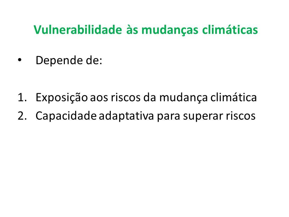 Vulnerabilidade às mudanças climáticas Depende de: 1.Exposição aos riscos da mudança climática 2.Capacidade adaptativa para superar riscos