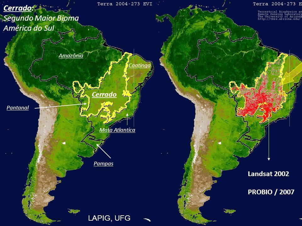 Estrutura da apresentação Mudanças de uso da terra no Cerrados Impactos sobre os ciclos do Carbono e Nitrogênio Impactos sobre os recursos hídricos Impactos sobre a Biodiversidade Medidas mitigadoras Considerações finais
