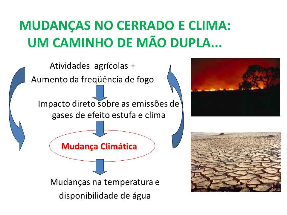 MUDANÇAS NO CERRADO E CLIMA: UM CAMINHO DE MÃO DUPLA... Atividades agrícolas + Aumento da freqüência de fogo Impacto direto sobre as emissões de gases