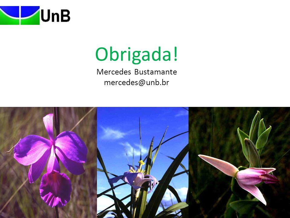 Obrigada! Mercedes Bustamante mercedes@unb.br