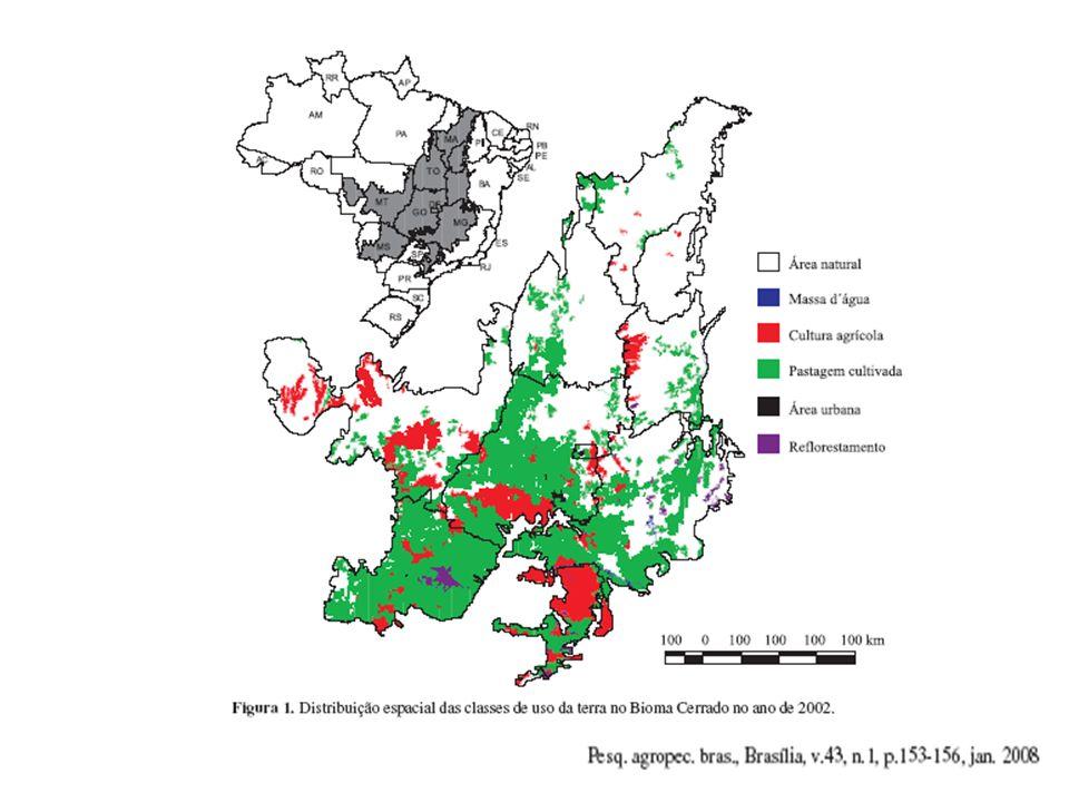 Emissões pela queima de biomassa Cerrado Contribuição da combustão da vegetação: CO = 3448,82 Gg C CH 4 = 229,92 Gg C NOx= 41,73 Gg N N 2 O = 2,41 Gg N (Krug et al.,2002)
