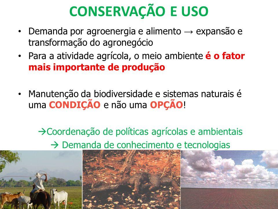 CONSERVAÇÃO E USO Demanda por agroenergia e alimento expansão e transformação do agronegócio Para a atividade agrícola, o meio ambiente é o fator mais