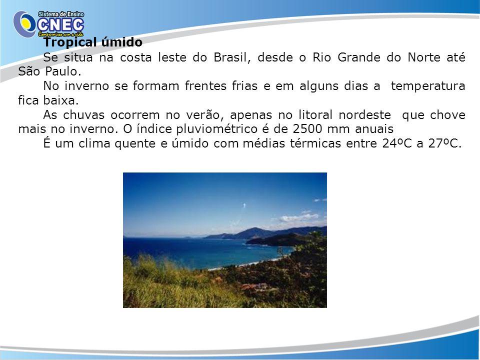Tropical úmido Se situa na costa leste do Brasil, desde o Rio Grande do Norte até São Paulo. No inverno se formam frentes frias e em alguns dias a tem