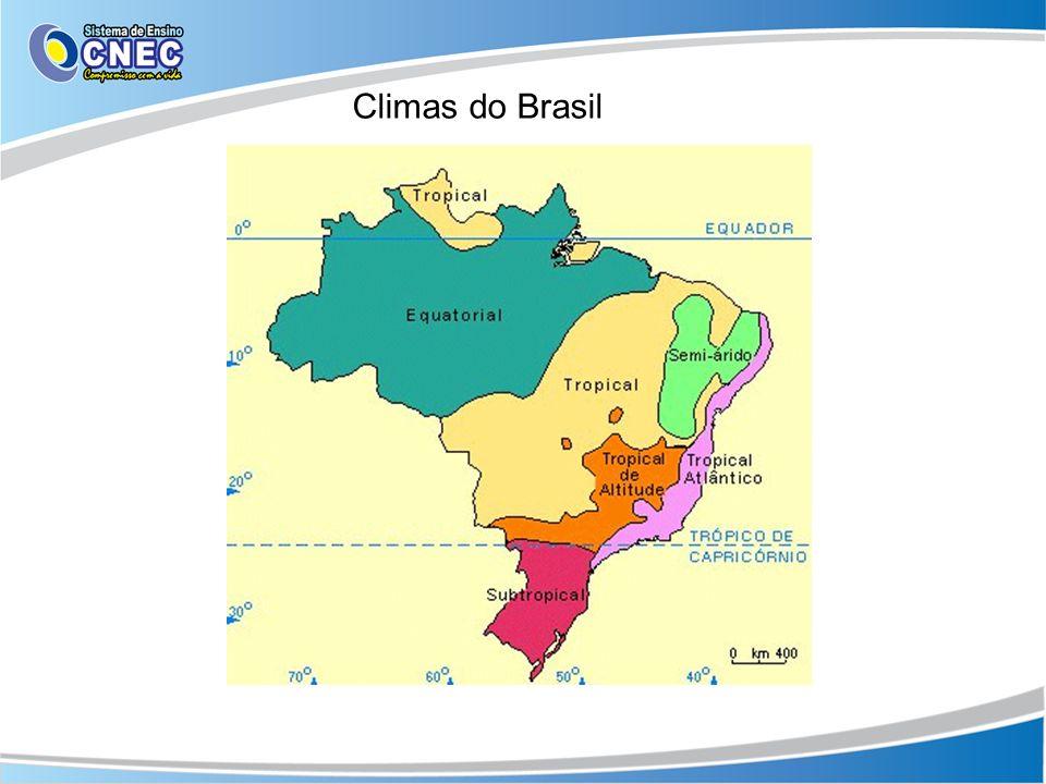 Equatorial É um clima quente e úmido, que fica ao redor da linha do Equador.