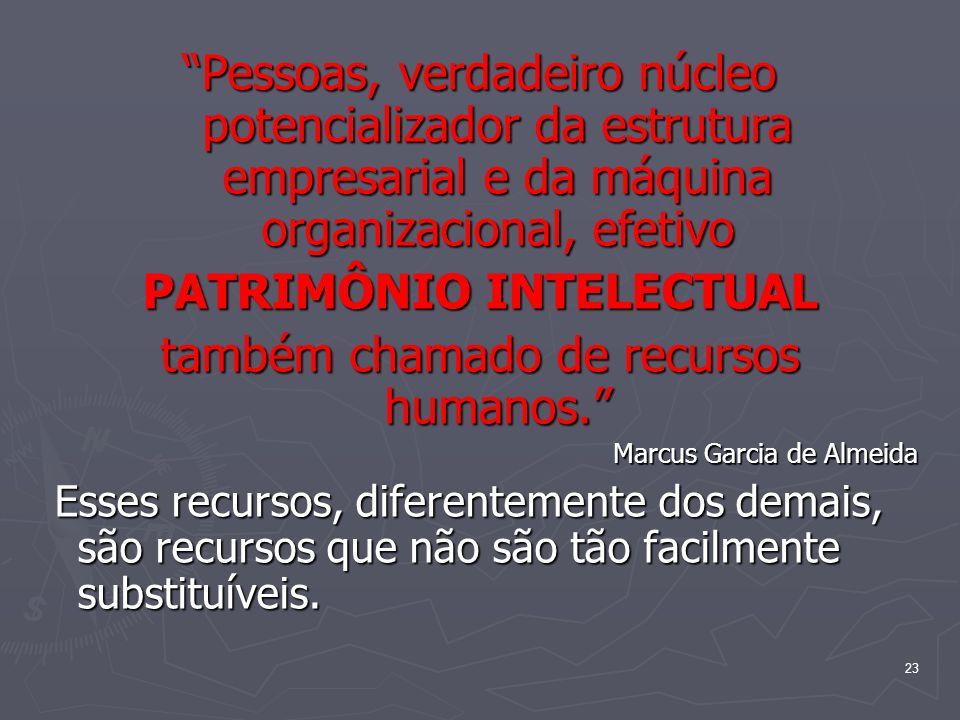 23 Pessoas, verdadeiro núcleo potencializador da estrutura empresarial e da máquina organizacional, efetivo PATRIMÔNIO INTELECTUAL também chamado de r