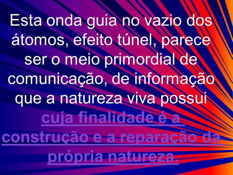 Esta onda guia no vazio dos átomos, efeito túnel, parece ser o meio primordial de comunicação, de informação que a natureza viva possui cuja finalidad