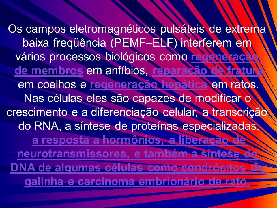 Os campos eletromagnéticos pulsáteis de extrema baixa freqüência (PEMF–ELF) interferem em vários processos biológicos como regeneração de membros em a