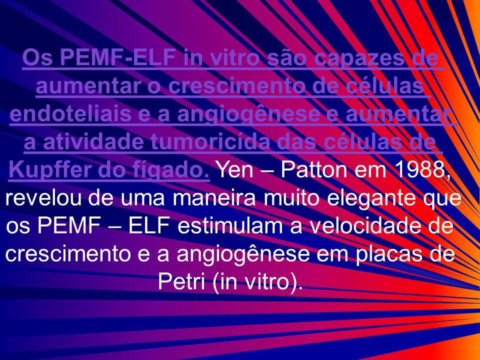 Os PEMF-ELF in vitro são capazes de aumentar o crescimento de células endoteliais e a angiogênese e aumentar a atividade tumoricída das células de Kup