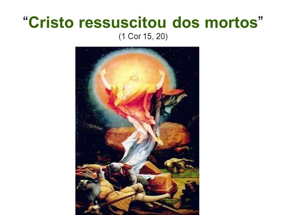 Símbolos Cristãos O peixe é um símbolo cristão por causa das iniciais da expressão grega Iesous Christos Theou Uios Soter (Jesus Cristo, Filho de Deus, Salvador).